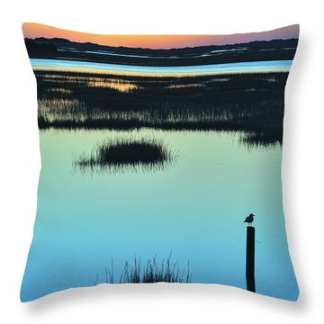 Throw Pillow featuring the photograph Sunrise Photography Art - Chelsea Morning By Jo Ann Tomaselli by Jo Ann Tomaselli