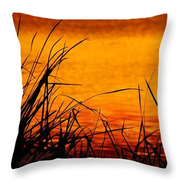 Throw Pillow featuring the photograph Sunrise Reflected On The Pond by Bill Kesler