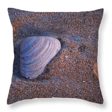 Sunrise Shell Throw Pillow