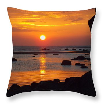 Sunrise Therapy Throw Pillow by Dianne Cowen