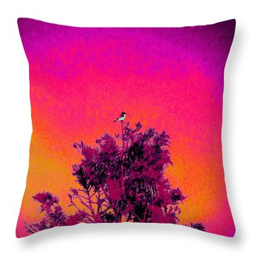 Sunrise To Sunset Nature Is Beautiful Throw Pillow