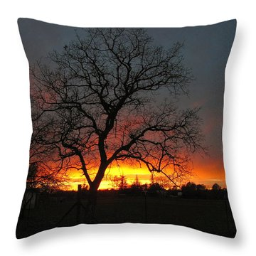 Sunset 02 18 13 Throw Pillow by Joyce Dickens