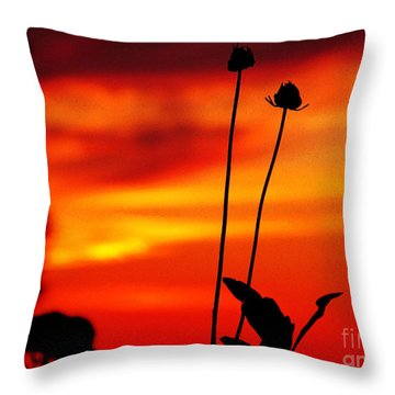 Sunset 365 20 Throw Pillow by Tina M Wenger