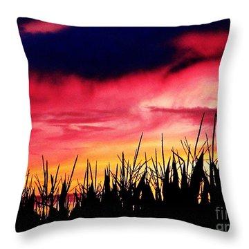 Sunset 365 62 Throw Pillow by Tina M Wenger