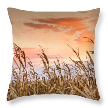 Sunset Against The Cornstalks Throw Pillow