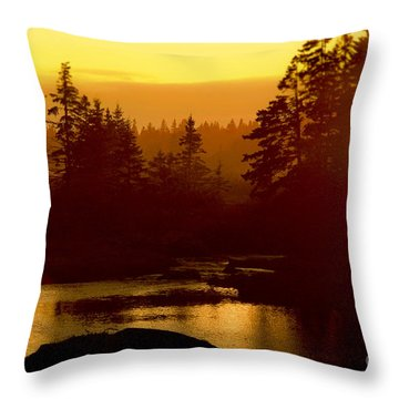 Sunset Throw Pillow by Alana Ranney