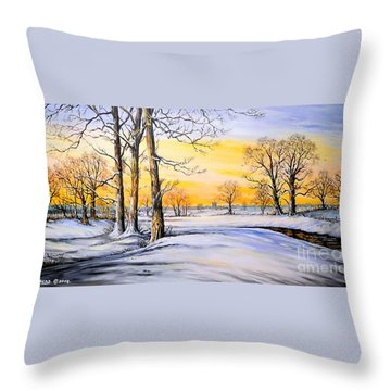 Sunset And Snow Throw Pillow by Andrew Read