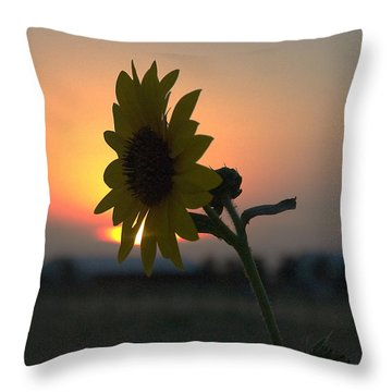 Throw Pillow featuring the photograph Sunset And Sunflower by Mae Wertz
