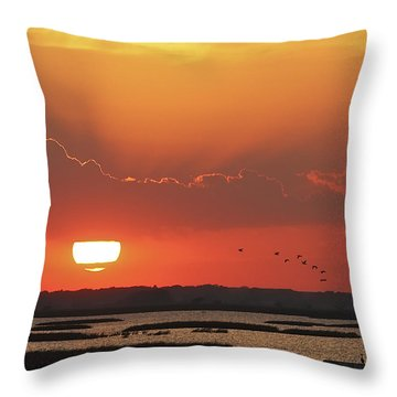 Sunset At Cheyenne Bottoms Throw Pillow