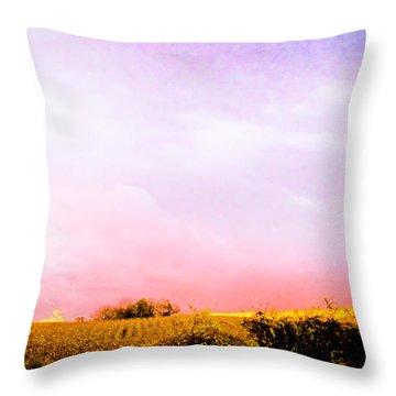 Sunset At The Farm Throw Pillow by Sara Frank