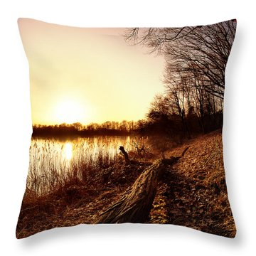 Sunset At The Lake Throw Pillow by Daniel Heine