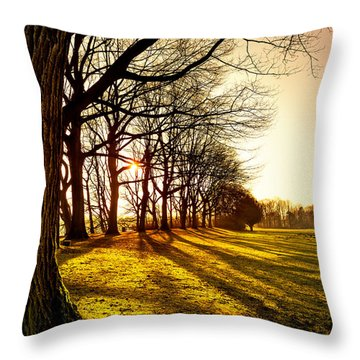 Sunset At The Park Throw Pillow by Daniel Heine