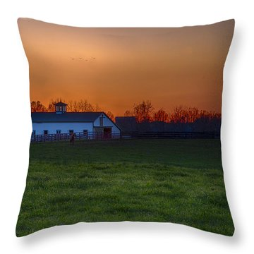 Walmac Farm Ky  Throw Pillow