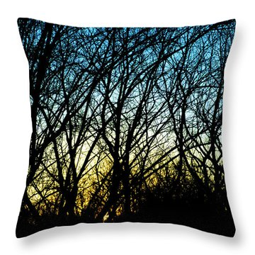 Sunset Behind Trees Throw Pillow