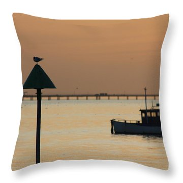 Sunset Blur Throw Pillow by Vicki Spindler