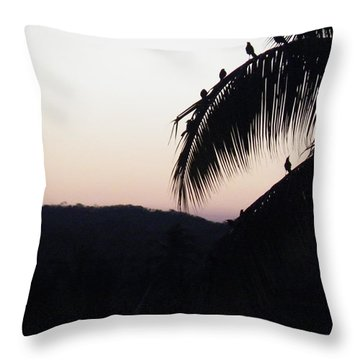 Throw Pillow featuring the photograph Sunset Chorus by Brian Boyle