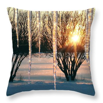 Throw Pillow featuring the photograph Sunset 'cicles by Doug Kreuger