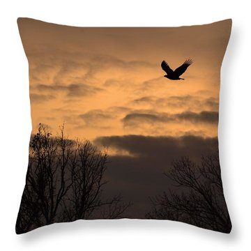 Sunset Eagle Throw Pillow