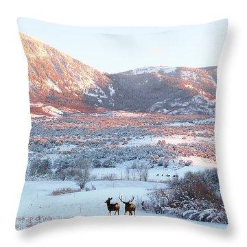 Sunset Emergence  Throw Pillow