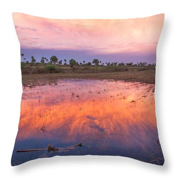 Everglades Afterglow Throw Pillow