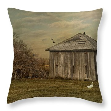 Sunset Farm Throw Pillow