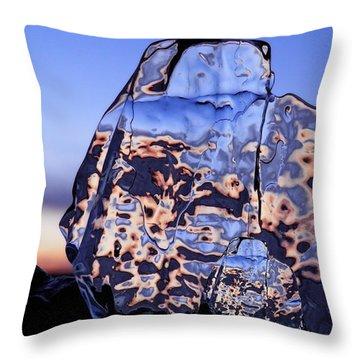 Sunset Fish Throw Pillow
