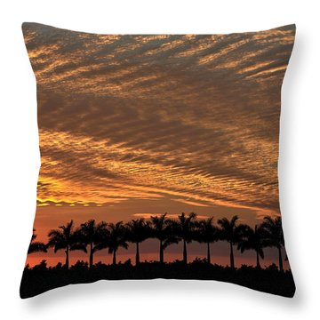 Sunset Florida Throw Pillow