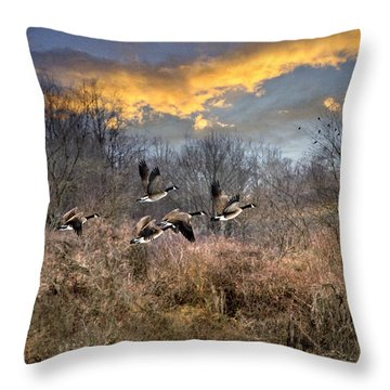 Sunset Geese Throw Pillow by Christina Rollo