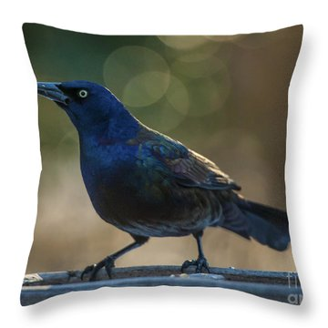 Sunset Grackle Throw Pillow