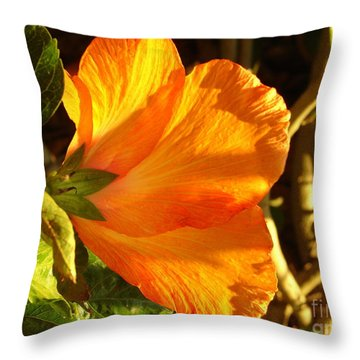 Sunset Hibiscus Throw Pillow by Lew Davis