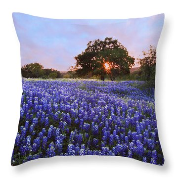 Sunset In Bluebonnet Field Throw Pillow