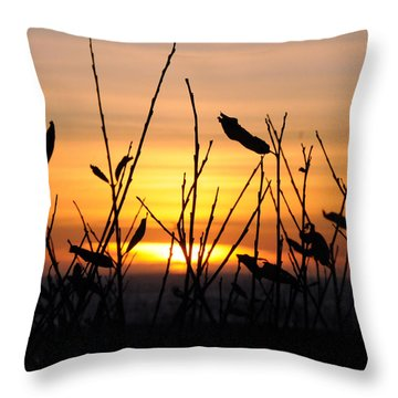 Sunset In Half Moon Bay Throw Pillow