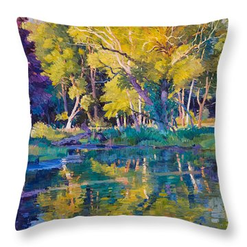 Sunset In Hinsdale Park Throw Pillow