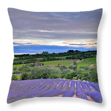Sunset In Provence Throw Pillow