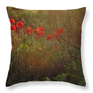 Sunset In The Poppy Garden Throw Pillow