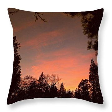 Sunset In Winter Throw Pillow by Michele Myers