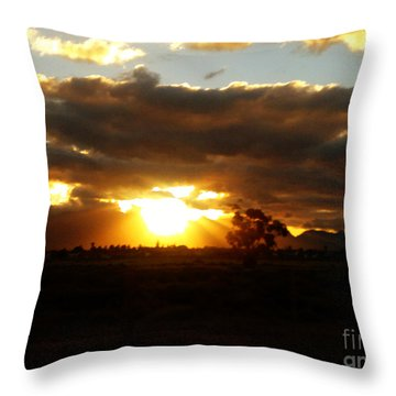 Sunset In Worcerster Throw Pillow by Willinda Swart