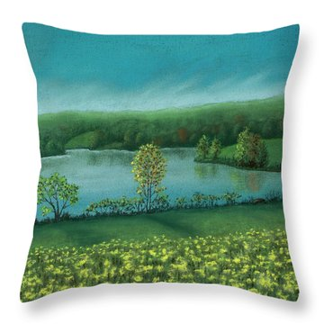 Sunset Lake C Throw Pillow