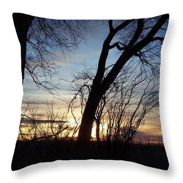 Idaho Sunset 1 Throw Pillow