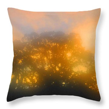 Sunset Mocks Sunrise Throw Pillow