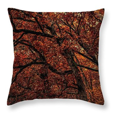Sunset Oaks 2 Throw Pillow