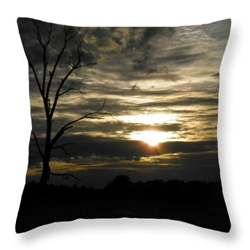 Sunset Of Life Throw Pillow