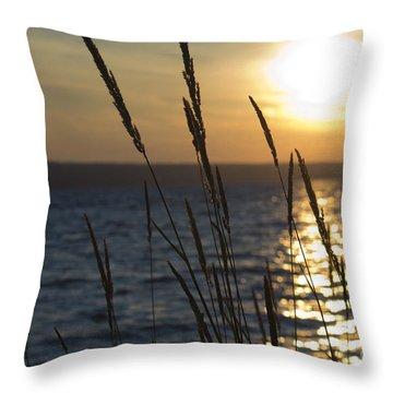 Sunset On Cayuga Lake Throw Pillow