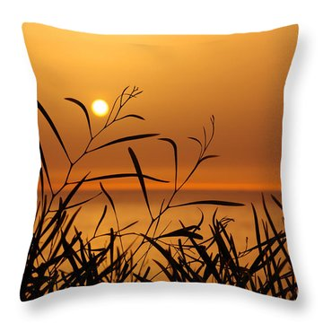 Sunset On Leaves  Throw Pillow by Carlos Caetano
