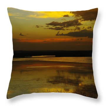 Sunset On Medicine Lake Throw Pillow by Jeff Swan