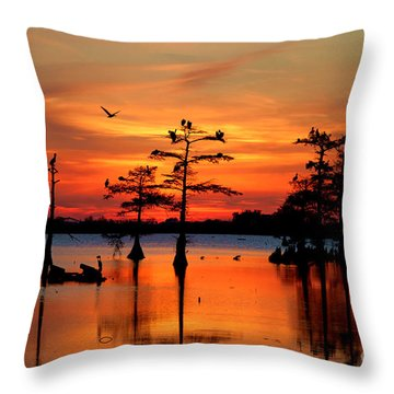 Sunset On The Bayou Throw Pillow