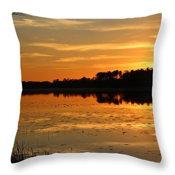 Sunset On The Lake Throw Pillow by Cynthia Guinn