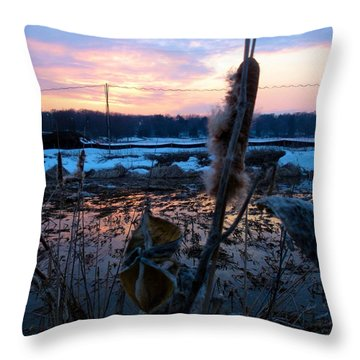 Sunset On The Pond Throw Pillow by Zafer Gurel