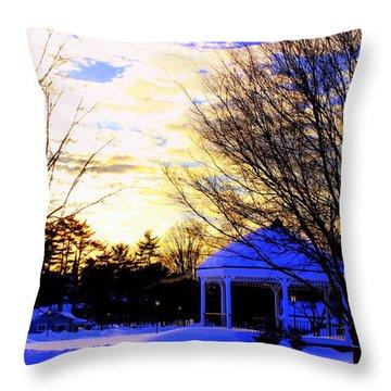Sunset On Wilmington Common Throw Pillow