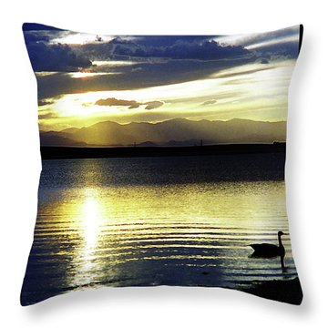 Sunset Over Aurora Throw Pillow